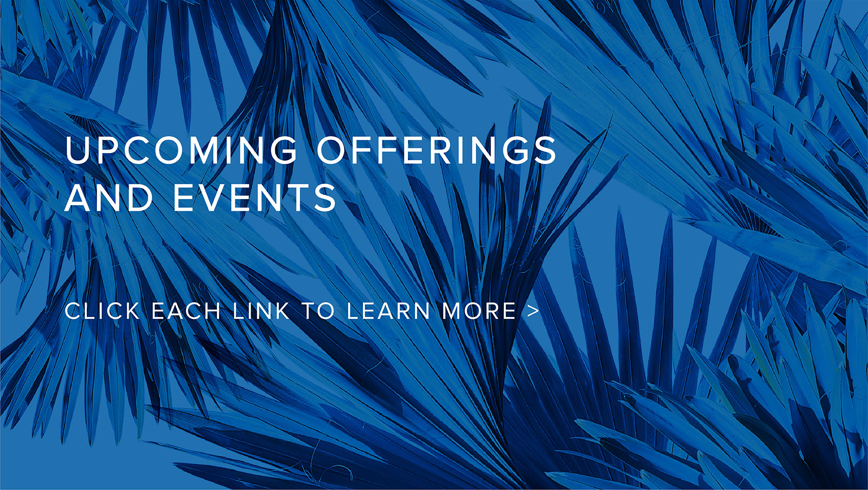 Upcoming Offers + Events - Click the Links